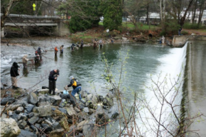 showing 2nd image of When Is Opening Day Of Trout Season In Pa 2019 Outdoors: Trout stocking schedules released